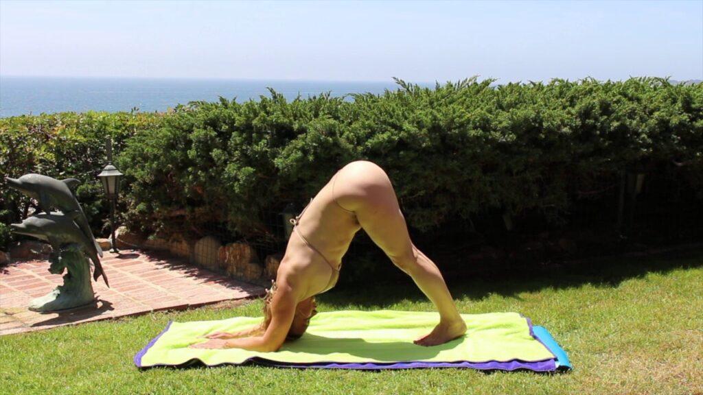 nackt yoga delphin